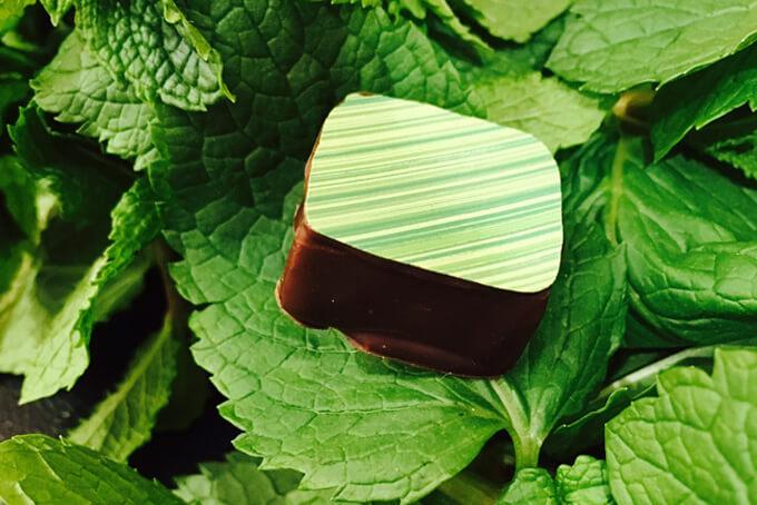 découverte du métier de chocolatier