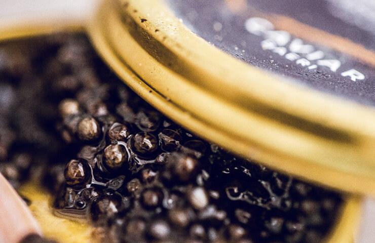 Dossier Caviar-Castillone-Guilhem