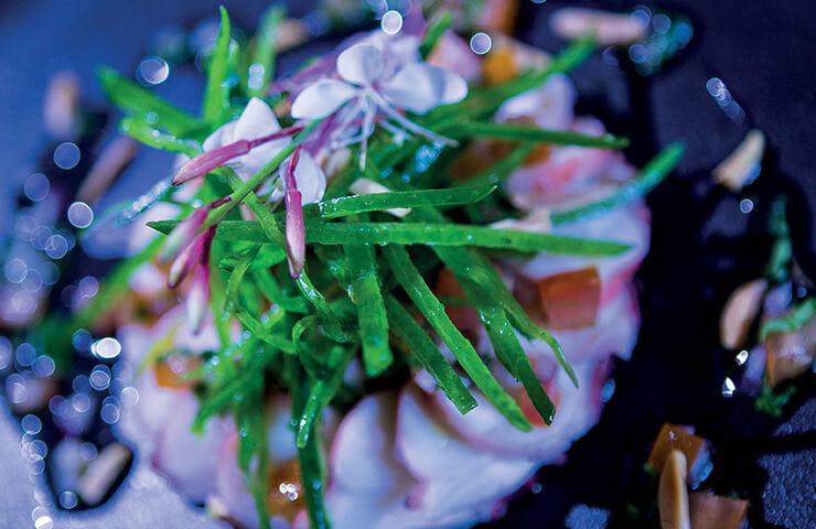 Plat rougail et rosace poulpe