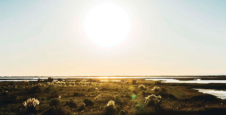 coucher de soleil camargue